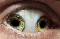 一只眼睛两个瞳孔 是帝王天命的象征吗?